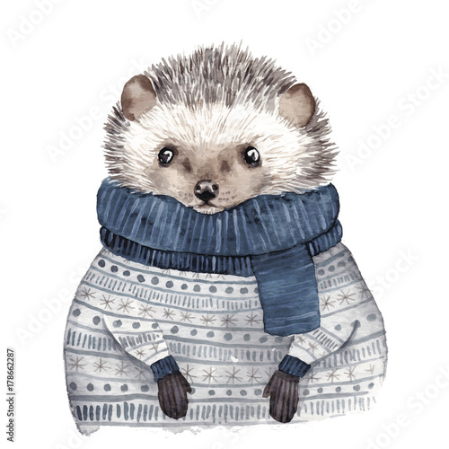 Cute watercolor hedgehog - 178662287
