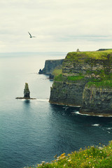 Cliffs of Moher, west coast of Ireland, County Clare on wild Atlantic ocean. Photo of a beautiful scenic sea and sky landscape. View of ocean scenery. Lightly toned, vertical © freeskyline
