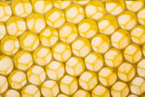 beecombs texture in the detail - a macro photo - 178681671