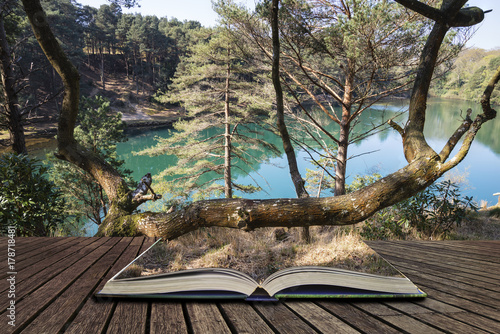 Fotobehang Cappuccino Beautiful vibrant landscape image of old clay pit quarry lake with unusual colored green water concept coming out of pages in open book
