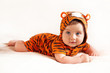 funny boy wearing little tiger suit