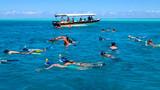 Snorkeling in the lagoon Bora Bora - 178739278
