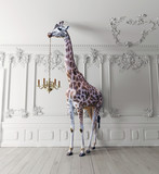 the giraffe hold the chandelier - 178773288