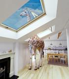 Giraffe in the attic window - 178773290