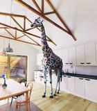 Giraffe in the attic - 178773408