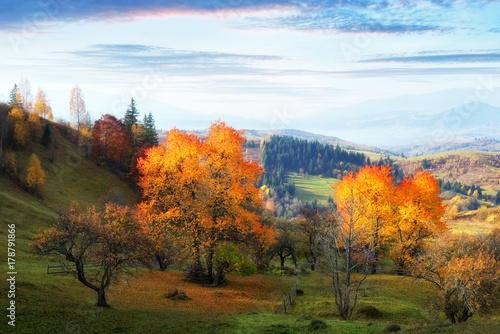 Aluminium Herfst Amazing rural scene on autumn valley