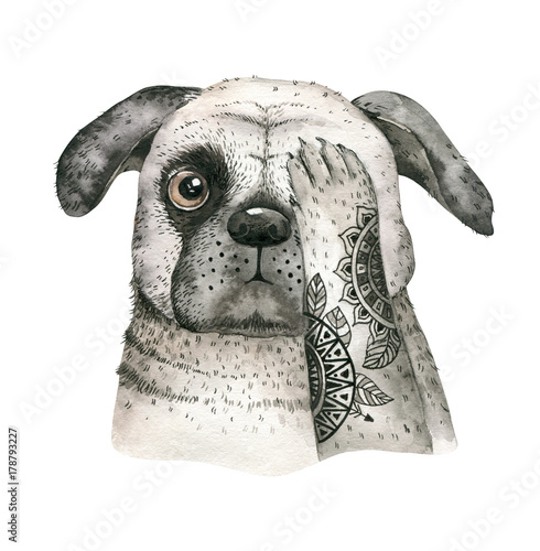 Watercolor closeup portrait of cute dog. Isolated on white background. . Hand drawn sweet home pet. Greeting card animal nursary design decoration - 178793227