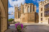 The gothic Cathedral and medieval La Seu in Palma de Mallorca islands, Spain - 178816493