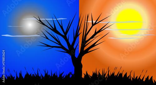 In de dag Oranje eclat day and night