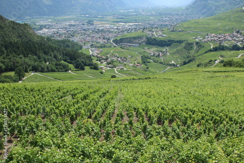 Foto op Plexiglas Pistache Sion, Valais, Switzerland