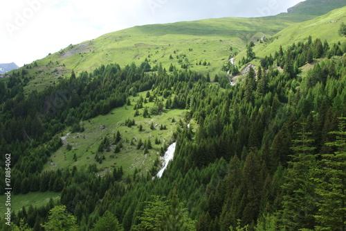 Foto op Canvas Pistache Mountain, nature, person, freedom
