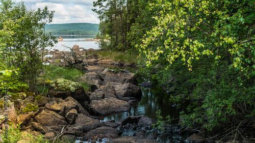 Fotobehang Betoverde Bos Forest creek running among rocks to the lake. Sunny, serene landscape.