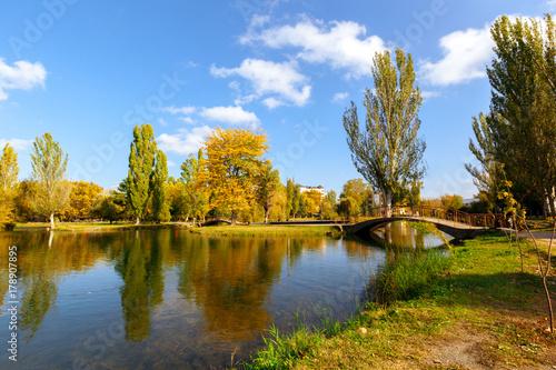 Autumn leaves © fotofabrika