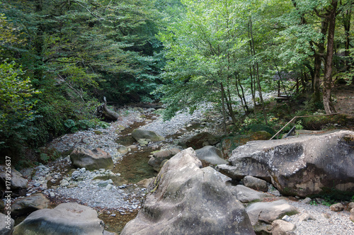 Fotobehang Khaki Горная река в лесу