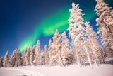Northern lights, Aurora Borealis in Lapland, Finland - 178934201