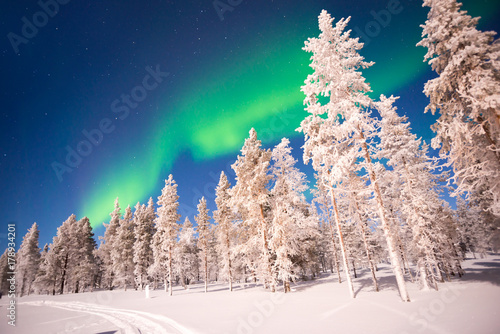 Fotobehang Noorderlicht Northern lights, Aurora Borealis in Lapland, Finland