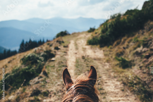 ears of the horse in front of the mountain landscape