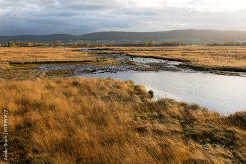 Foto op Plexiglas Natuur Moorlandschaft