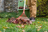 Autumn garden works - 178964024
