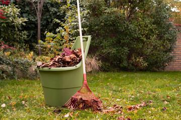 Autumn garden works