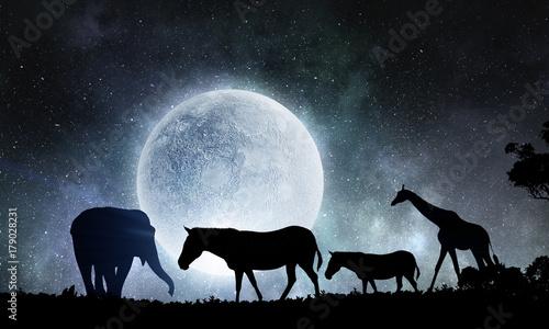 Fotobehang Grijze traf. Natural Safari landscape
