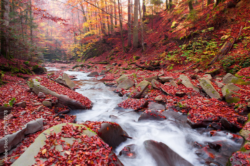 Foto op Canvas Herfst Magnificent view of the waterfall in the Autumn Beech Forest in Europe
