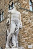 Fontana del Nettuno, Florence, Italy - 179080078