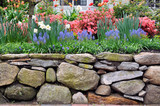 Fototapety Dry Stone Wall and Colorful Garden