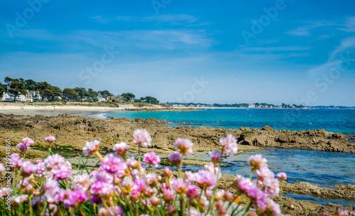 Papiers peints Bleu ciel Plage de Carnac rochers et fleurs, Morbihan, Bretagne, France