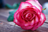 Pink rose on wooden table. Selective focus. - 179157068