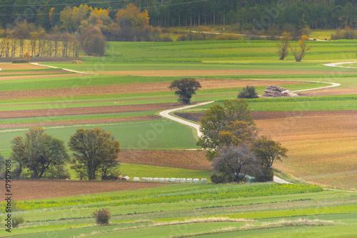 Wall mural Farmland in Autumn