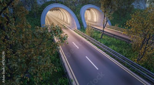 Tunele i puste drogi z drzewami i roślinami