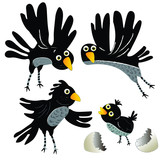 Funny Black Bird And A Hatched Chick Wall Sticker
