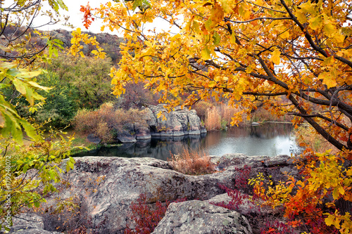 Foto op Canvas Honing Mountain lake peers through the yellow foliage
