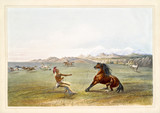 Old watercolor illustration of a native indiand catching the wild horse. By G. Catlin, publ. on Catlin's North American Indian Portfolio, Ackerman, New York, 1845 - 179265283