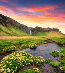 Spectacular morning view of Seljalandfoss Waterfall on Seljalandsa river.