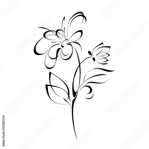 ornament 173. stylized flower in black lines on a white background