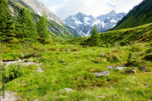 Foto op Canvas Pistache Berglandschaft
