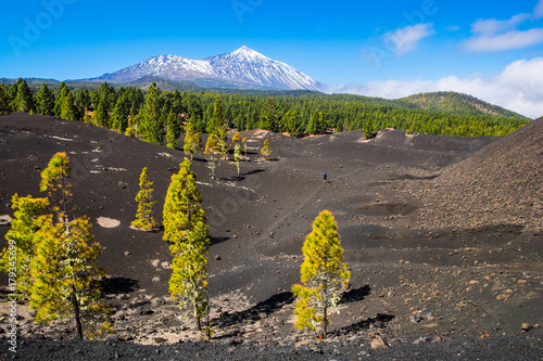 Foto op Canvas Canarische Eilanden View of the volcano Teide near Arenas Negras. Grandeur nature and small man. Teide National Park, Tenerife, Canary Islands, Spain. Artistic picture. Beauty world.