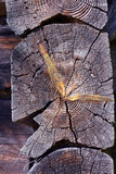 Ancient wooden log barn corner