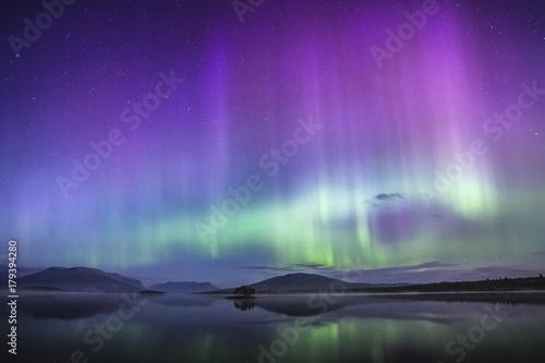 Fototapeta Cold Aurora
