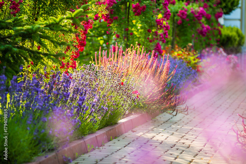 beautiful landscaping with beautiful plants - 179409853
