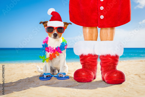 Fotobehang Crazy dog dog and owner as santa claus on christmas at the beach