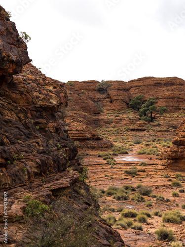 Foto op Plexiglas Chocoladebruin KINGS CANYON - WATARRKA NATIONAL PARK, AUSTRALIA