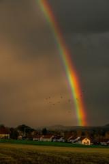 Fantastischer Regenbogen auf dem Land
