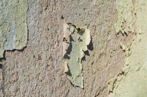 Foto op Canvas Baksteen muur Textura de parede descascada, problema construtivo.