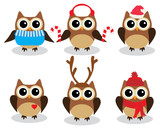 Vector Fun Owls