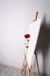 Rose on a white canvas background. Flower and picture on the easel - 179500646