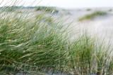 Nordsee, Strand auf Langenoog: Dünen, Meer, Entspannung, Ruhe, Erholung, Ferien, Urlaub, Glück, Freude,Meditation :) - 179516255