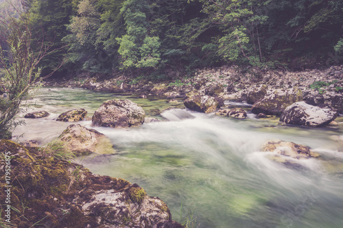 Mountain river in the green forest - 179526875